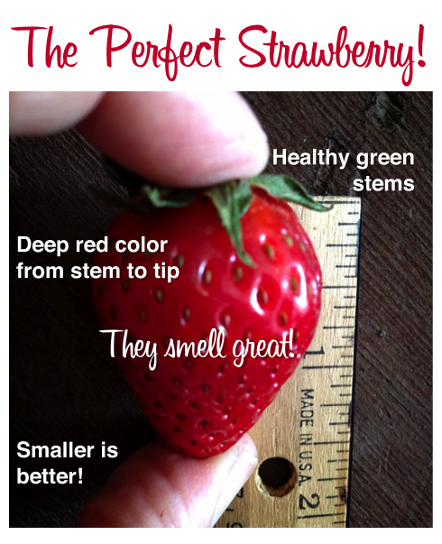How to buy the perfect strawberry | www.dearmartini.wordpress.com